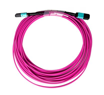 Picture of DYNAMIX 50M OM4 MPO ELITE Trunk Multimode Fibre Cable. POLARITY C