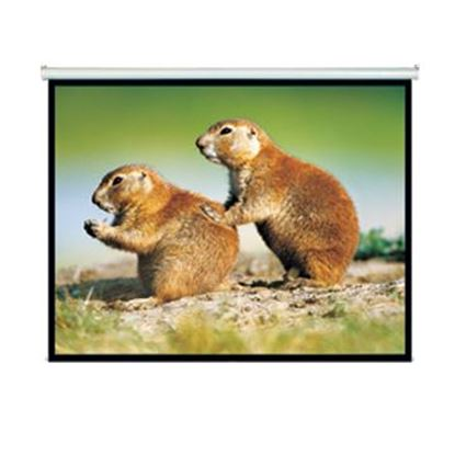 Picture of BRATECK 150' Projector Screen, Manual Self Locking, Matte Finish.