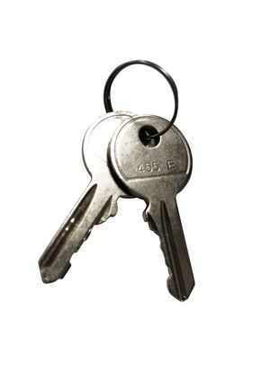 Picture of DYNAMIX Replacement Key For RODW series Outdoor Wall