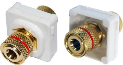 Picture of AMDEX Red Speaker Binding Post. Gold Plated