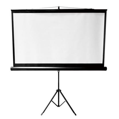 Picture of BRATECK 112' Projector Screen, with Tripod. 1:1 Aspect ratio.