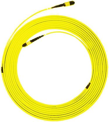 Picture of DYNAMIX 100M MPO APC ELITE Trunk Single mode Fibre Cable. POLARITY A
